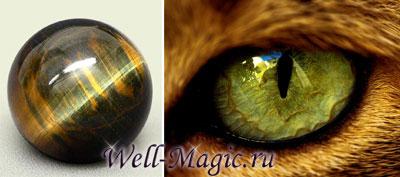 Противоречивая магия кошачьего глаза