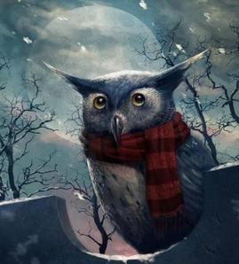 Суеверия про сову.