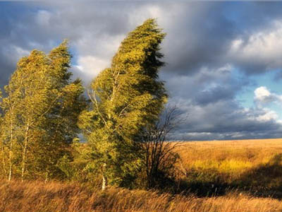 ветер картинки: