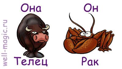 sovmestimost-seksualnaya-emotsionalnaya-intellektualnaya