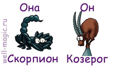 Козерог девушка и скорпион мужчина совместимость