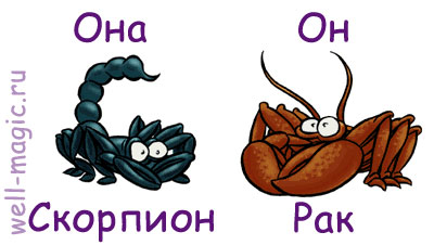 скорпион-рак