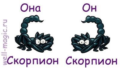 три вида скорпионов в гороскопе #6