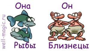 Сексуальная совместимость рыбой и близнецом