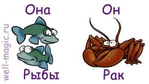 Она-Рыбы, он-Рак